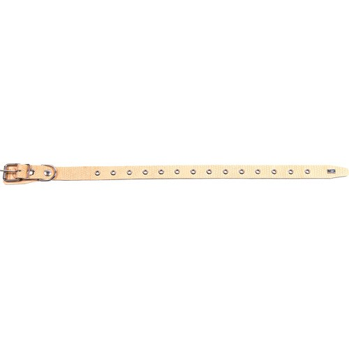 Ошейник 25 мм РЕПТИЛИЯ УНИВЕРСАЛЬНЫЙ (16-55 см х 25 мм)